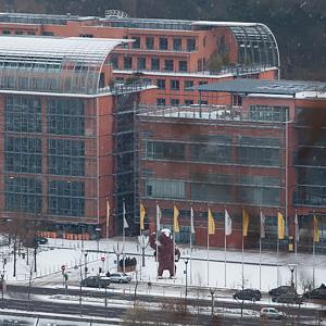 Photographie Lyon Cité internationale, Parc de la Tête d'Or sous la neige