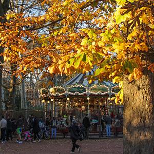 Photographie du Parc de la Tête d'Or en automne