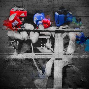 Championnat de Boxe région Auvergne Rhône-Alpes 2018